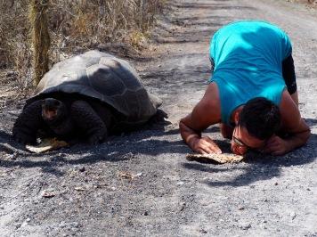 Turtle as big as us