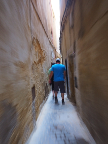 The narrow alleys of Fez