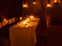Evenings at Londolozi