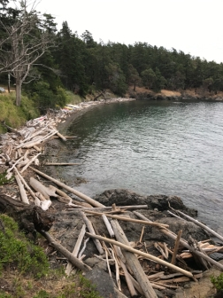 The beach at Jones