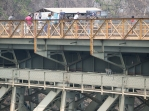Monkey business on the bridge